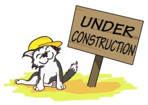construction-cat